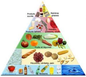 suivi alimentaire